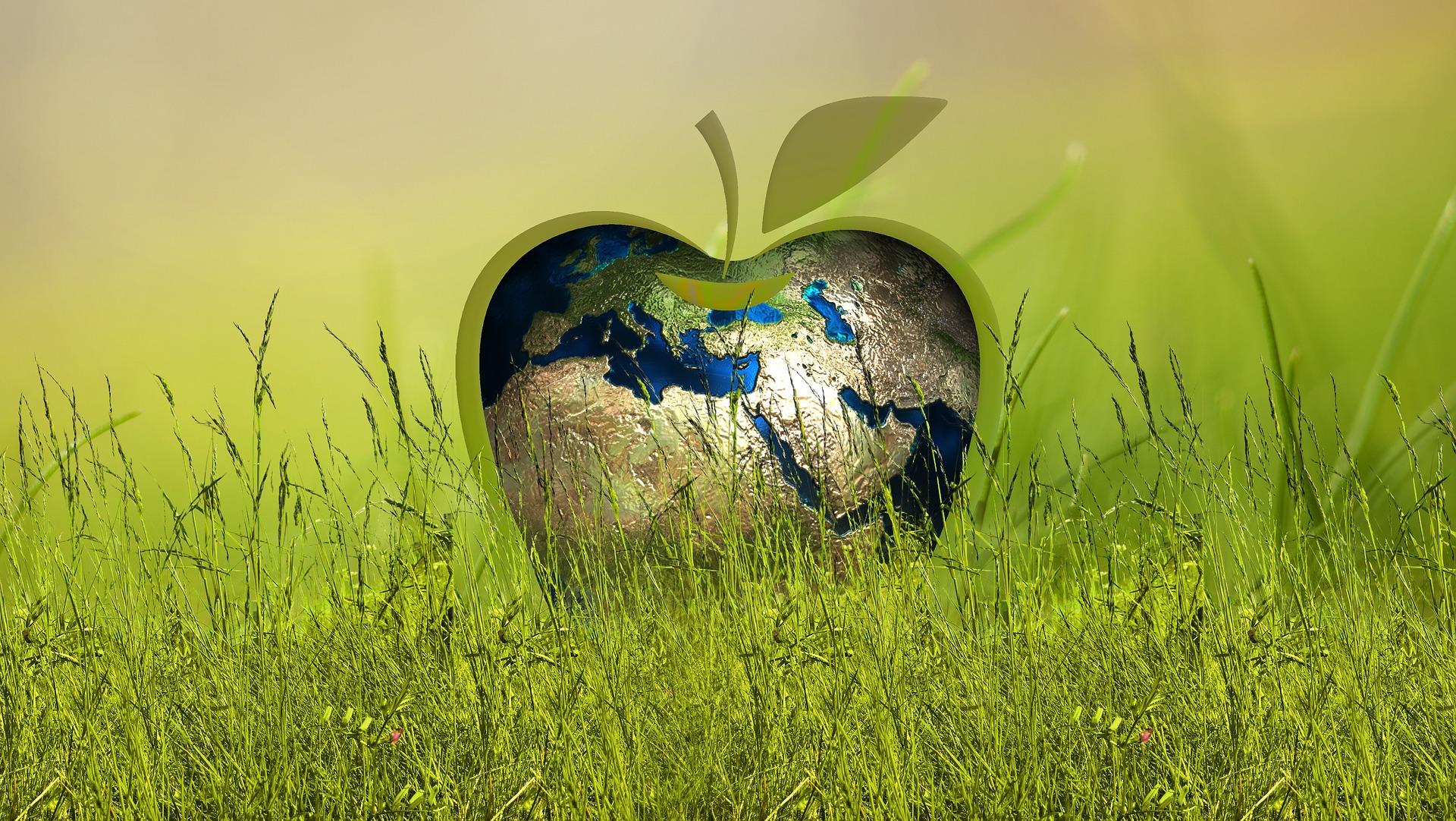 ESG Nachhaltigkeit Bild von Gerd Altmann